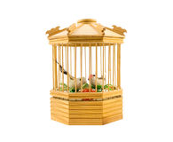 Wooden bird cage Royalty Free Stock Photography