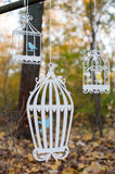 Wooden bird cages. Hanging from a tree Royalty Free Stock Image