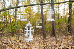 Wooden bird cages. Hanging from a tree Stock Image