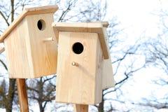 Wooden bird cages Stock Photos