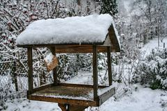 Wooden bird feeder with hanged bacon rind covered with snow. Winter garden and fence in background royalty free stock images