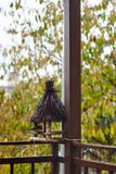 Wooden bird feeder on the house terrace Royalty Free Stock Photo
