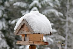 Wooden bird feeder with snow Royalty Free Stock Image