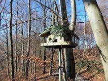 Wooden bird feeders in the autumn park. Wooden bird feeders on the tree stock photos