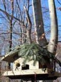 Wooden bird feeders in the autumn park. Wooden bird feeders on the tree stock photography