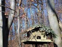 Wooden bird feeders in the autumn park. Wooden bird feeders on the tree stock image