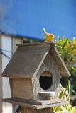 Wooden bird house Stock Images