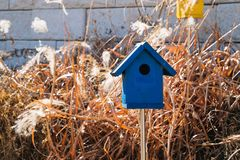 Wooden bird house with reed. Wooden bird house with autumn reed royalty free stock photos