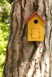 Wooden bird house on a centennial pine trunk. Yellow wooden bird house on a centennial pine trunk Royalty Free Stock Photo