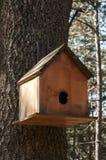 Wooden bird house. Closeup on oak tree royalty free stock photos