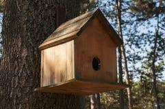 Wooden bird house. Closeup on oak tree royalty free stock image