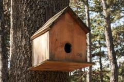 Wooden bird house. Closeup on oak tree stock photos