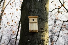 Wooden bird house fixed on tree trunk in winter season forest. Wooden bird house fixed on tree trunk in winter season Stock Photography