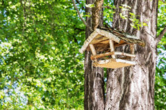 Wooden bird house hanging on the green tree, beauty in nature Stock Photography