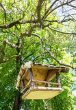 Wooden bird house hanging on the green tree, ornithology theme Stock Photos