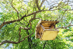 Wooden bird house hanging on the green tree Royalty Free Stock Images