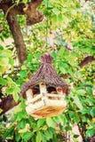 Wooden bird house hanging on green tree. Wooden bird house hanging on the green tree. Ornithology theme. Seasonal natural scene. Beauty photo filter stock image