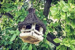 Wooden bird house hanging on green tree. Wooden bird house hanging on the green tree. Ornithology theme. Seasonal natural scene. Blue photo filter stock photography