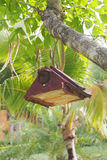 Wooden bird house hanging on tree Stock Images