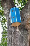Wooden bird house hanging from a tree with leaves. Wooden bird house hanging from a tree with green leaves royalty free stock photography