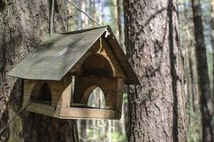Wooden bird house hangs on a tree in a green forest. A Wooden bird house hangs on a tree in a green forest stock images
