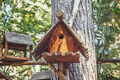 Wooden bird house, nesting box on tree in forest. Closeup stock photos