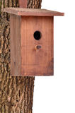 Wooden bird house(starling house)on tree trunk. Wooden bird house (starling house) on a tree trunk isolated on white background Stock Images