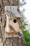 Wooden Bird House On A Tree Royalty Free Stock Photography