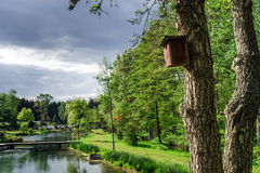 Wooden bird house on a tree Royalty Free Stock Image