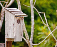 Wooden Bird House Stock Image