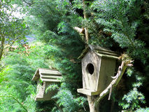 Wooden bird houses Royalty Free Stock Photography