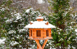 Wooden bird's feeder Royalty Free Stock Images