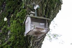 Wooden birdfeeder. Old wooden empty bird feeder Royalty Free Stock Photo