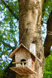 Wooden birdhouse Royalty Free Stock Photos