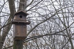 Wooden birdhouse with bird feeder hanging on the tree in winter park. Wooden birdhouse with bird feeder hanging on the tree in winter city park stock photography