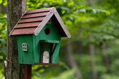 Photo of wooden birdhouse in cold summer forest stock images