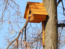Wooden birdhouse feeder for birds on a tree Royalty Free Stock Image