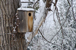 Wooden Birdhouse after a Fresh Snowfall Stock Photo