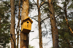 Wooden Birdhouse hang on a pine tree Royalty Free Stock Images