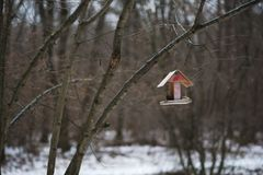 Wooden Birdhouse hang on a tree. Open wooden Birdhouse hang on a tree Royalty Free Stock Images