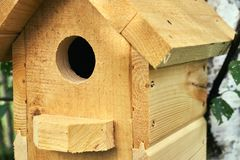 Free Wooden Birdhouse On A Birch Tree In The Forest In Summer Close Up Stock Photos - 122270773