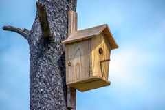 Wooden birdhouse on a pine tree Stock Photography