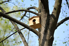 Wooden birdhouse Stock Photography