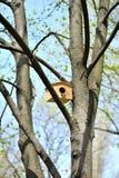 Wooden birdhouse Stock Image