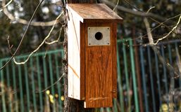 Wooden birdhouse on a tree Royalty Free Stock Photo