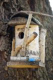 Wooden Birdhouse on a Tree. Closeup on a wooden birdhouse made of a tree trunk Stock Images