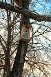 Wooden birdhouse on tree trunk for wintering birds Stock Photos