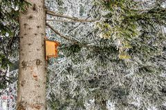 Wooden birdhouse on a tree in the winter wonderland mountain forest with centuries-old spruce and pine in the austrian Alps. Semme stock photography