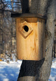 Wooden birds feeder in winter forest. Wooden birds feeder on the tree trunk in winter forest Royalty Free Stock Photography
