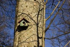 Wooden birds house Stock Image
